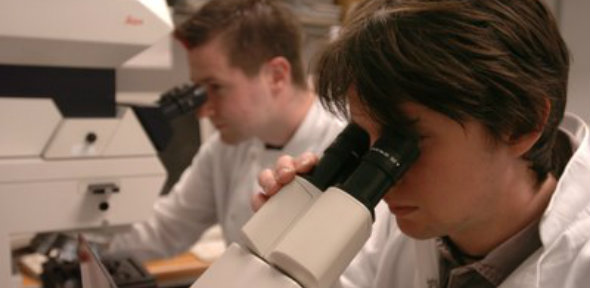 Scientist 12_590x288